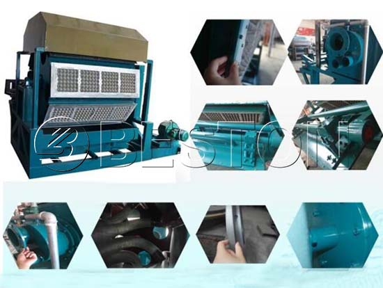 Automatic Pulp Molding Machine