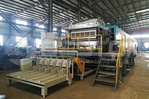 Automatic Egg Tray Machine to Saudi Arabia