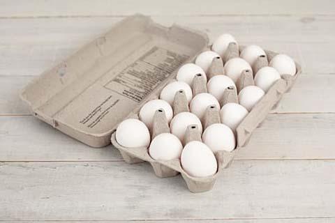 Egg Crate Making Machine