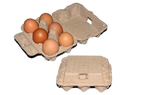 Egg Carton Machine for Sale